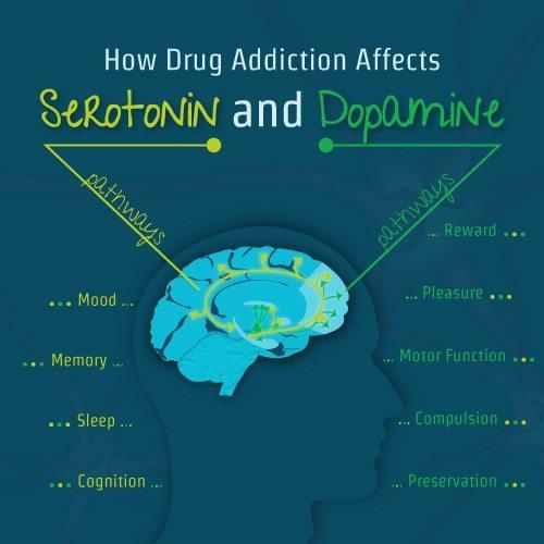 Dopamin dan serotonin